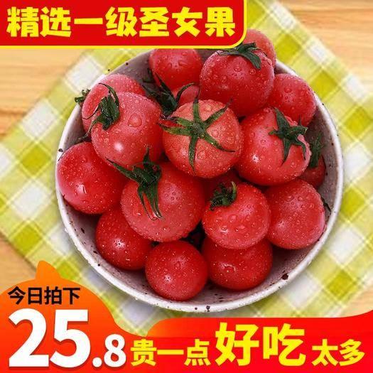 廈門 當季新鮮水果圣女果小番茄非千禧海南西紅柿