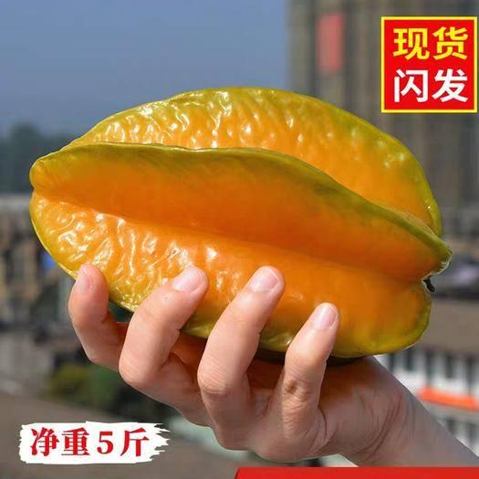 漳州漳浦縣下河楊桃 應季水果包郵一箱新鮮5斤福建漳州少見孕婦酸甜現季水果