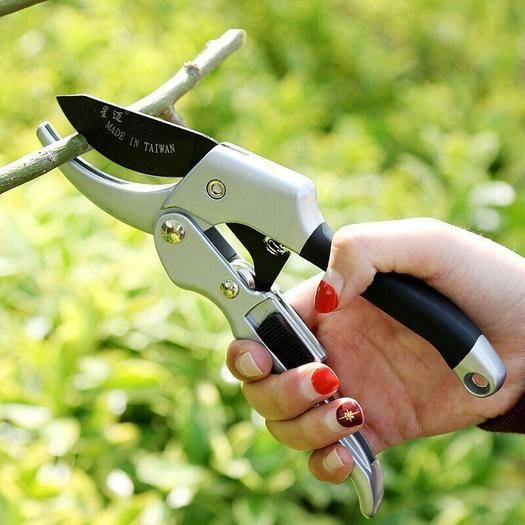 佛山 滑轮省力修枝剪刀 修剪园林园艺工具花木果树树枝粗枝剪摘果剪刀