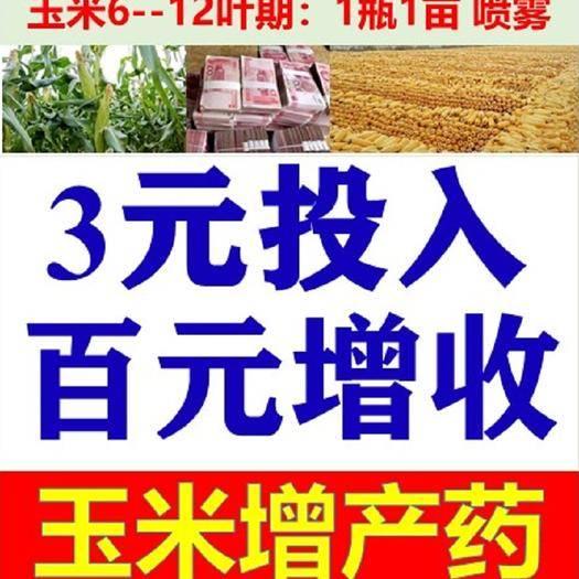 长沙矮壮素 玉米控旺增产,3元投入百元增收,胺鲜酯乙烯利1亩防倒伏增重大