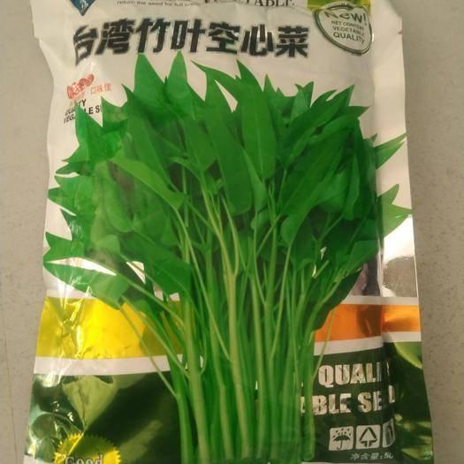 济南历城区 台湾竹叶空心菜种子500克