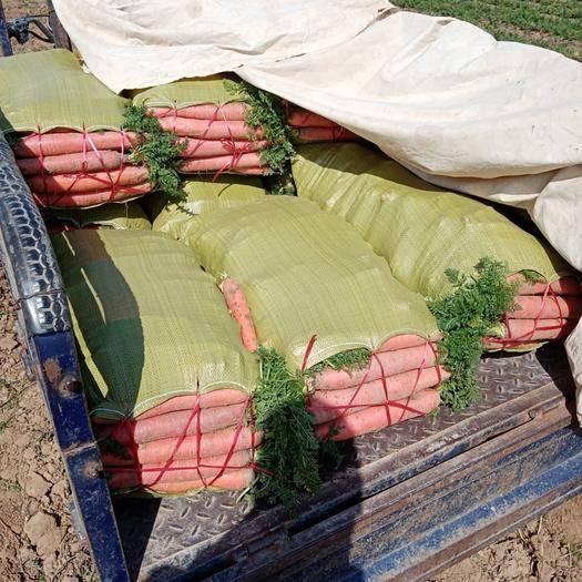 许昌襄城县三红胡萝卜 ,三红,品质好,产地直发