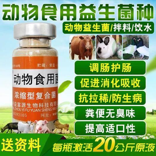 鄭州營養添加劑 益富源動物食用益生菌種雞鴨鵝豬牛羊鴿子兔
