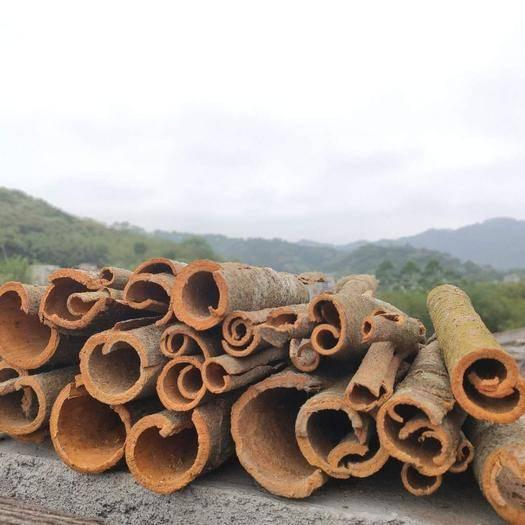玉林容县肉桂 大量干桂皮,需要一个长期合作的伙伴,诚信。