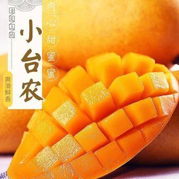 【一件代发】海南小台芒果新鲜当季孕妇水果台芒小台农芒果