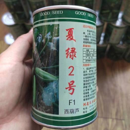 寿光市 西葫芦种子  夏绿2号 F1