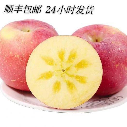 臨汾紅富士蘋果 【順豐包郵】山西紅富士冰糖心脆甜皮薄汁多新鮮大果原產地直供