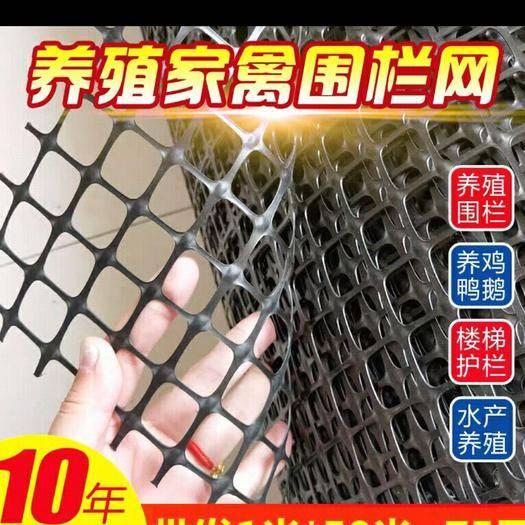 安平县护栏网/围网 圈玉米网漏粪网鸭鹅床隔离网黑胶鸡鹅孔雀网床养殖网围栏网.