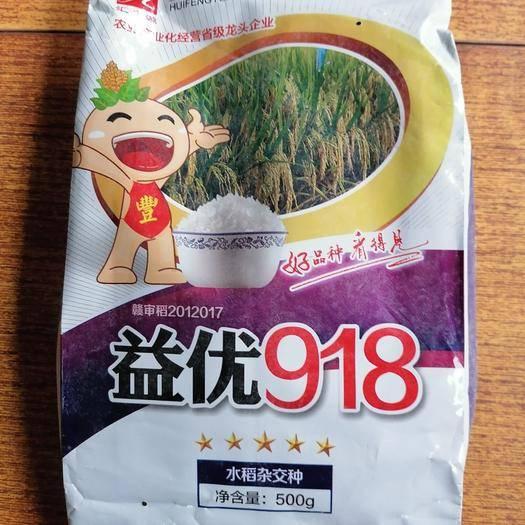 上饶婺源县水稻种子益优918 杂交种 ≥80%