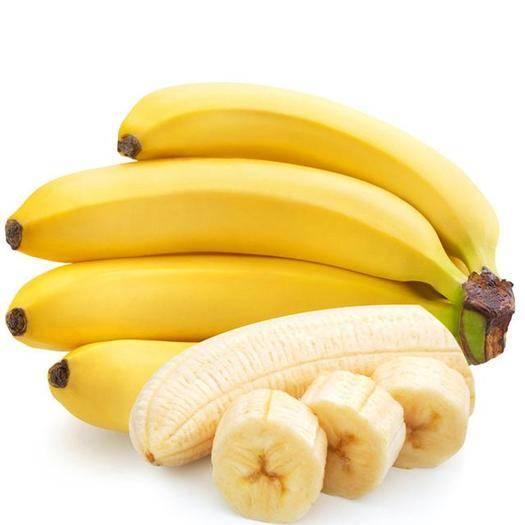 湛江雷州市 广东甜香蕉农业种植热带水果矮杆巴西香蕉香甜可口