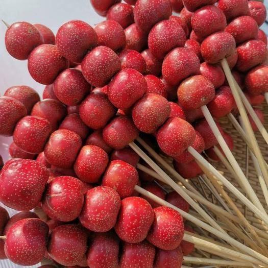 枣庄山亭区 山楂批发坏果包赔大金星山楂大棉球做糖葫芦专用全年供货