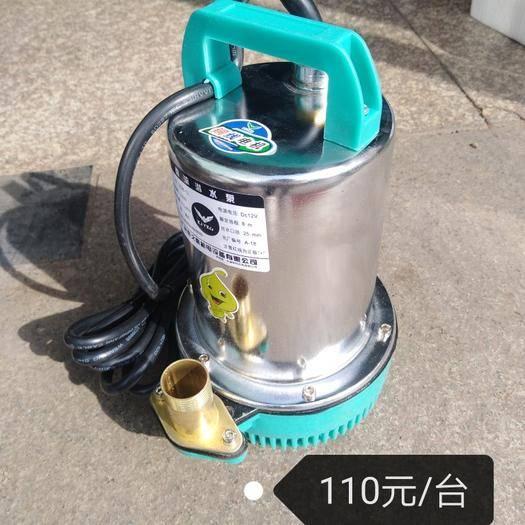 锦州 电动车水泵果园菜地浇花苗圃大棚用水直流泵24V48V60V