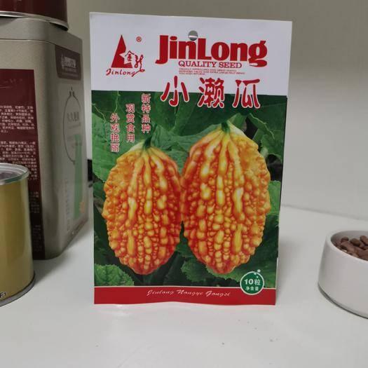 沭阳县吊瓜种子 优质小濑瓜外观艳丽观赏食用新特品种
