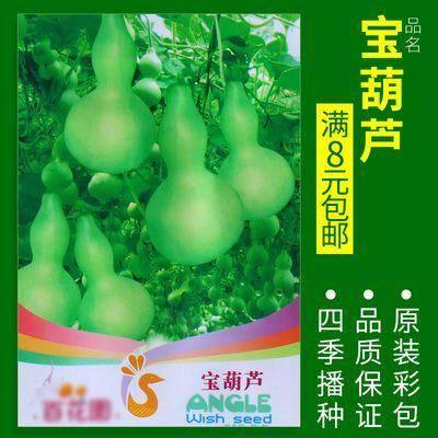 新沂市 宝葫芦种子
