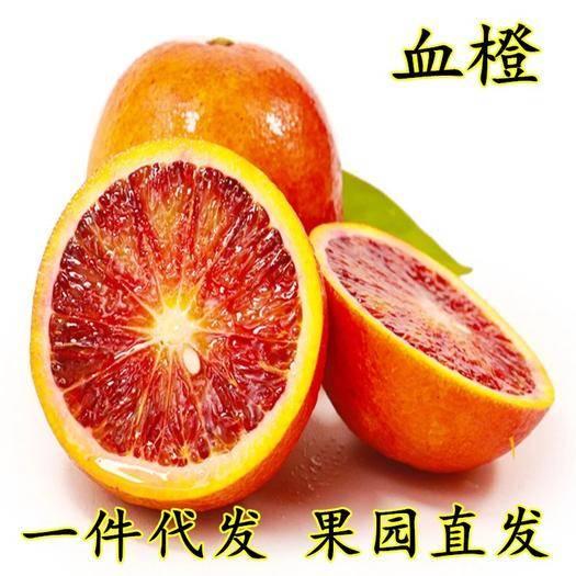 成都蒲江县 四川塔罗科血橙子新鲜现摘时令水果一件代发包邮塔罗科血橙