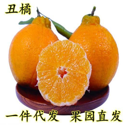 成都蒲江縣 現貨四川不知火丑柑橘子新鮮現摘水果3-8斤裝一件代發包郵