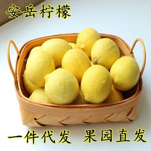 资阳安岳县 四川安岳黄柠檬当季新鲜水果3-5斤一件代发包邮