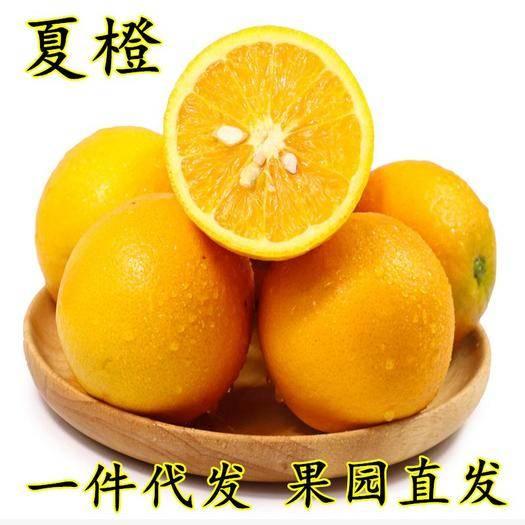 成都蒲江县 预售新鲜现摘四川夏橙爽口清甜时令水果10斤装多汁包邮橙子