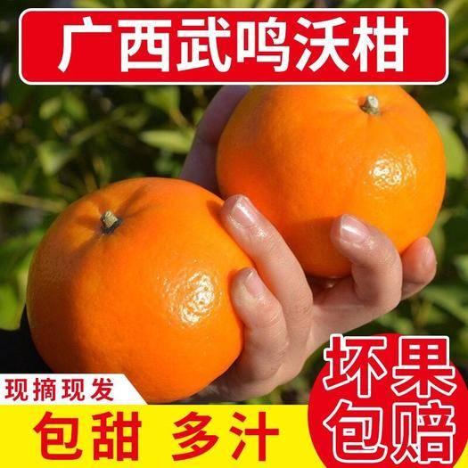 南寧武鳴區 【48小時之內發貨】廣西武鳴沃柑10斤新鮮桔子柑橘非蜜橘子