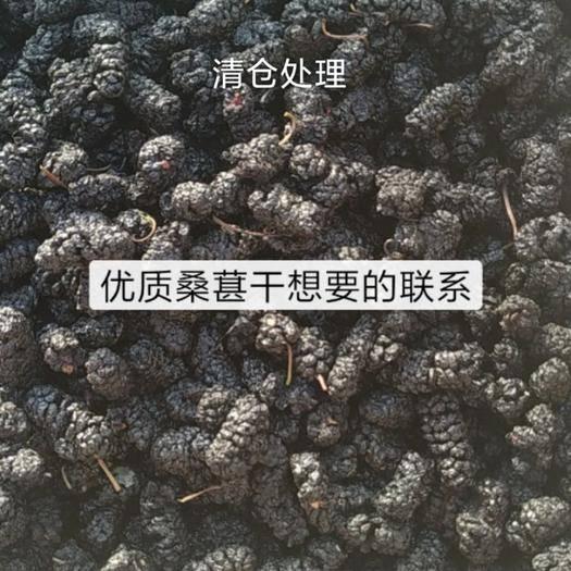 滄州泊頭市桑葚干 清倉處理