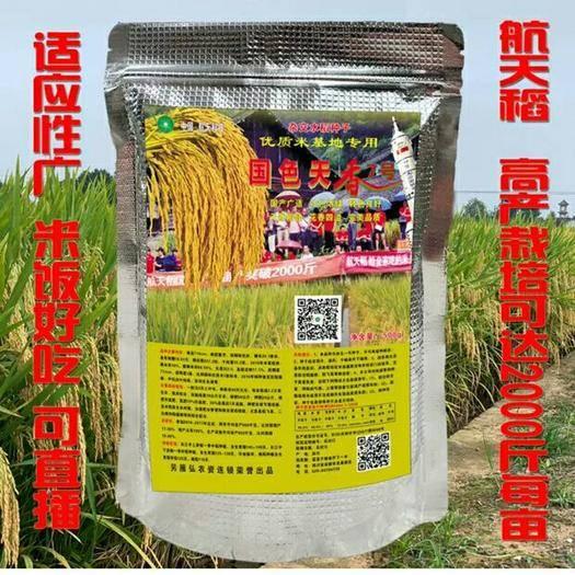 成都双流区 航天水稻种子