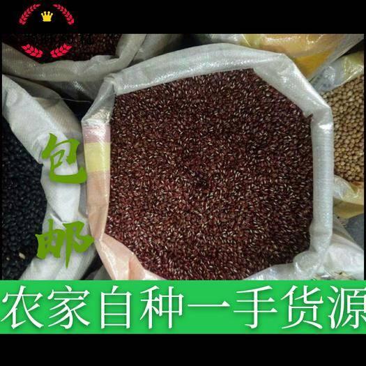 保定安國市赤小豆 藥食同源 產地貨源 平價直銷 袋裝 一件包郵