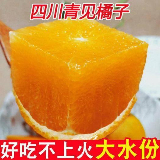 成都蒲江县青见柑桔 【破损包赔】四川青见当季新鲜孕妇水果橘子非果冻橙丑一件代发