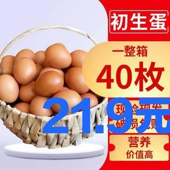 新鲜散养鸡蛋批发整箱大个土鸡蛋散养农村鸡蛋月子蛋包邮现货