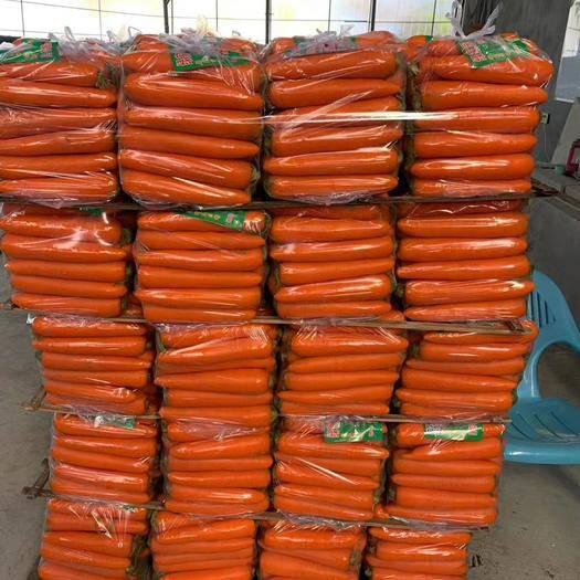 开封禹王台区三红胡萝卜 精品水洗!产区直供各种规格箱装、袋装,价格美丽开封庞磊