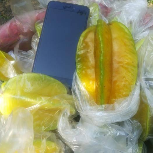漳州漳浦縣甜楊桃 當季熱帶水果個頭飽滿香甜多汁