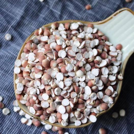 廣州越秀區 精選大顆粒開邊芡實 口感香糯甜潤 支持一件代發質量保證