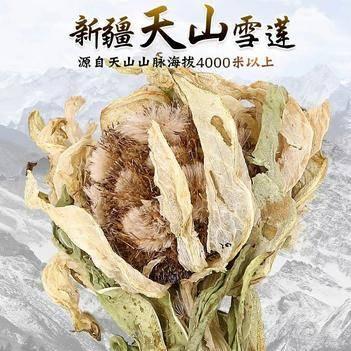天山雪莲 新疆花海拔4500米正品正宗中药材滋补煲汤泡酒料包邮