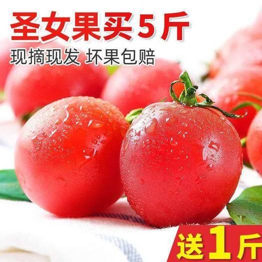 楚雄元谋县 【现货直发】新鲜圣女果5斤樱桃小番茄水果非千禧西红柿蔬菜
