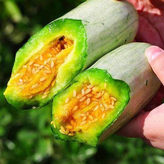 臨沂蒙陰縣羊角蜜甜瓜 山東羊角蜜5斤順豐包郵。新鮮采摘現發。