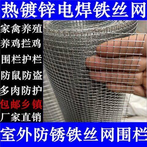 安平县护栏网/围网 热镀锌圈玉米网鸡鸭鹅兔鸽鸟笼网铁丝网围栏网养殖网圈地网