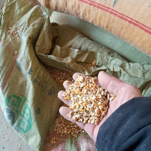 菏澤鄆城縣碎小麥