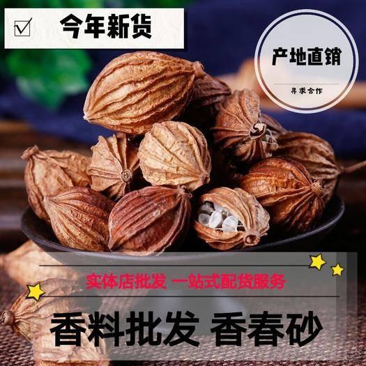 亳州譙城區春砂仁 香春砂 香料批發 產地直銷量大從優 包郵