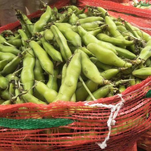 成都双流区 农村大量出售鲜胡豆角,价格实惠,品质好,产地直销