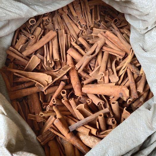 玉林玉州区 散装烟桂 广西烟桂 批发肉桂 10cm