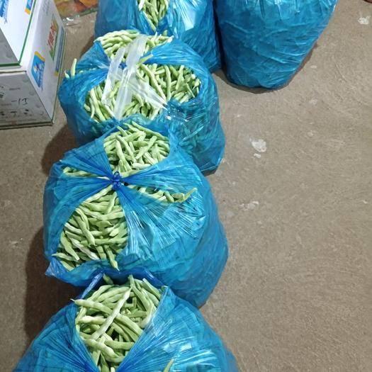 泰安寧陽縣 白條蕓豆無公害種植