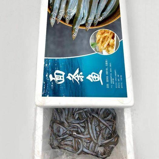 东营广饶县沙里钻鱼 面条鱼