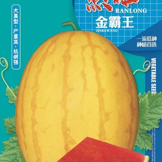 哈尔滨双城区 金霸王黄皮红肉礼品西瓜种子