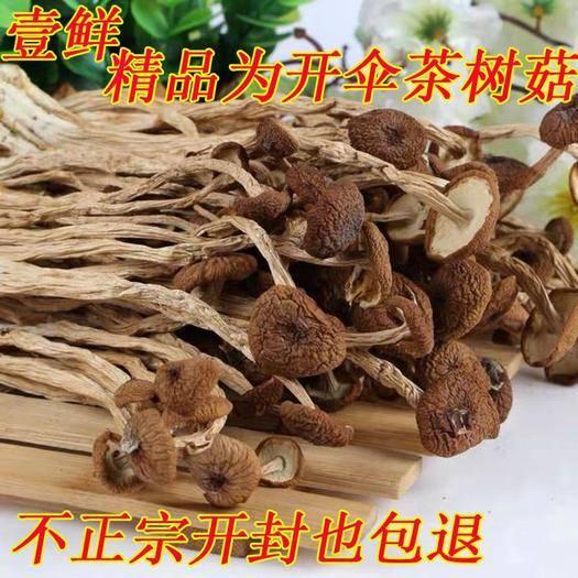 抚州黎川县 2020特级不开伞茶树菇干货批发江西农家茶树菇10斤起包邮