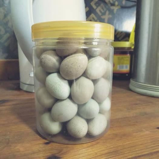 常州溧阳市桂花雀蛋 新鲜的桂花雀种蛋