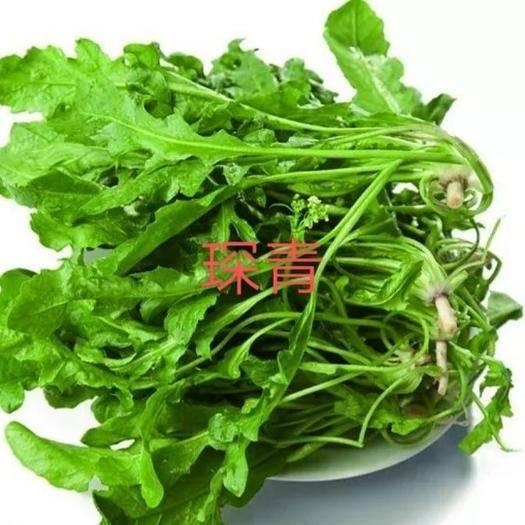沧县 【实在价】速冻荠菜碎,速冻荠菜整棵大量现货