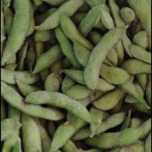 南京鼓樓區翠綠寶毛豆 12~18克