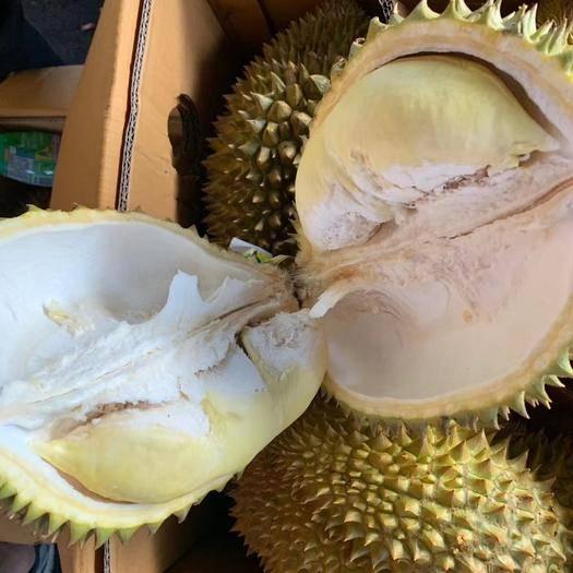 成都彭州市 泰国金枕榴莲到货,优质货,看价格勿扰,缺斤少两可举报