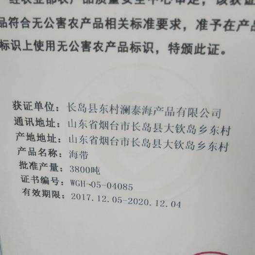 煙臺長島縣 中國出口海帶原產地,長島大欽島