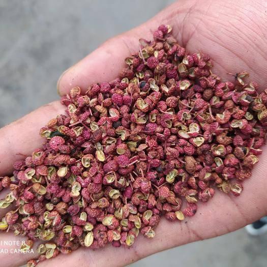 枣庄 大红袍花椒一手货源产地直销味道纯正无假原货质量保证