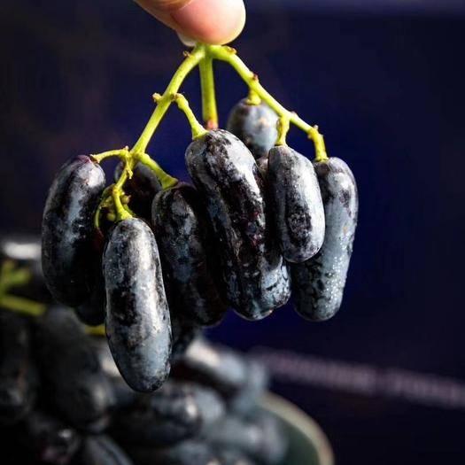 深圳 澳洲进口金手指葡萄3斤4斤原装礼盒一件顺丰包邮